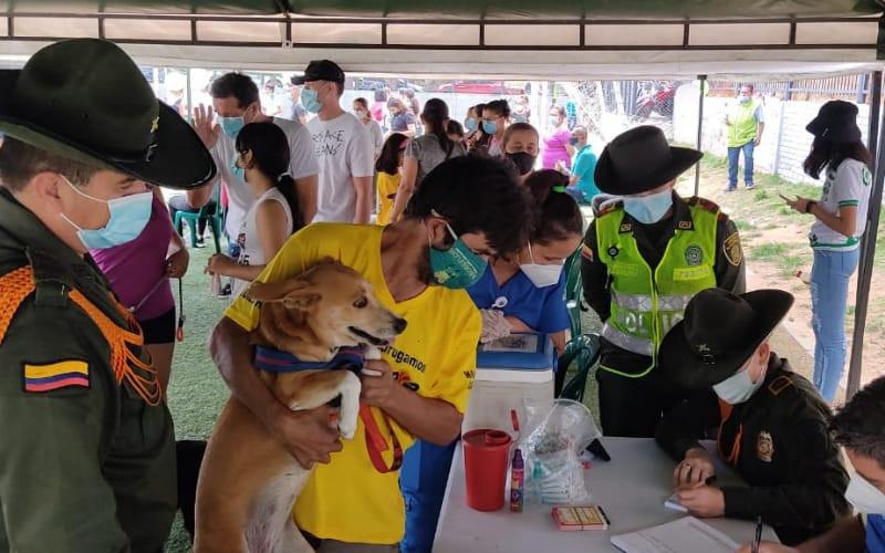 Jornada de bienestar para mascotas en El Dangond