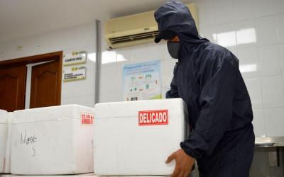 Más de 147 mil vacunas se distribuyeron en Santander