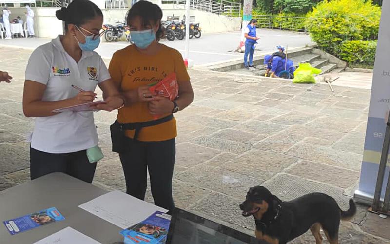 Donatón por los perritos y gaticos en condición de calle